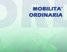 Mobilità ordinaria