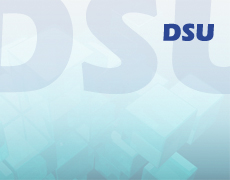 Software Dsu